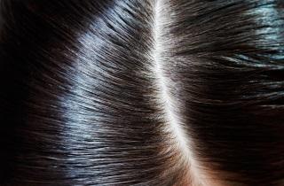 Правила применения масля мяты для волос