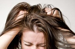 Причины сухости кожи головы