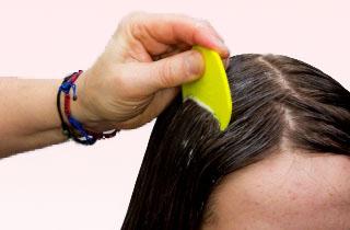 Может ли краска для волос избавить от вшей